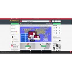 Website - Excel Pro