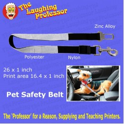 Pet Safety Lead